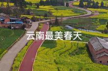 云南小众景点——腾冲界头油菜花,不要门票