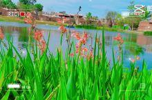 梧林村风景区