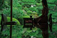 京都新绿·媲美琉璃光院镜射美景的旧邸御室