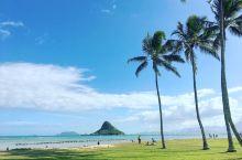 2019年的夏威夷