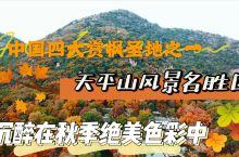 赏枫品历史|在天平山发现深秋绝美色彩