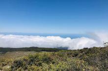夏威夷茂宜岛,忘了去一个什么山路上,像是在云端