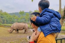 周末带宝宝游乐和乐都野生动物园