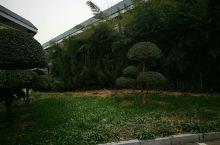 绿地...