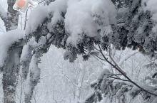 老白山雪景