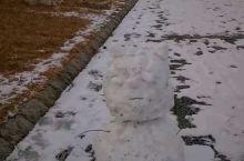 雪地,跑步