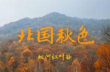 蛟河红叶谷攻略|北国最美秋色