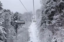 最美的风景配最粉的雪