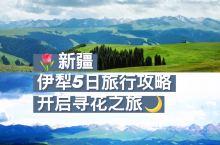 新疆|伊犁5日旅行攻略,开启寻花之旅