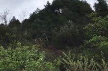 升钟湖国际垂钓基地游记