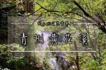 山东潍坊丨避暑胜地,青州黄花溪。