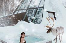 ❄️芬兰必住玻璃屋,和麋鹿一起泡个雪温泉