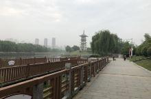 泗洪的河边治理的像公园