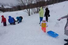 玩雪最开心