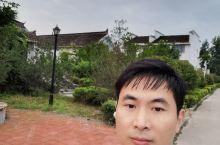 曹县八里湾湿地公园一日游