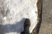从南到北来看雪了