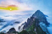 """五岳归来不看山,黄山归来不看岳,素有""""天下第一奇山""""的黄山,奇松漫山遍野,怪石嶙峋,一颗颗生长在悬崖"""