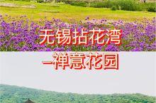 初夏时节在拈花湾欣赏梵天花海