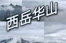 来华山看一场云海吧||华山最强攻略