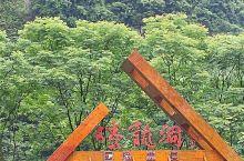 腾龙洞~亚洲最大溶洞