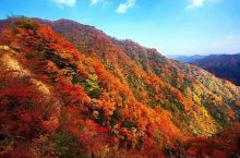 秋天光雾山