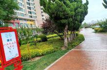 雨后街景,处处清凉清新,绿树葱郁,风光无限好
