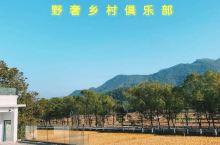 惠州野奢乡村俱乐部㊙️私享无边泳池