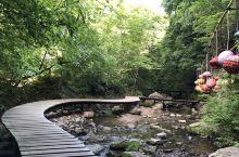 看着流淌的小溪,走在蜿蜒的小桥上,心情格外愉悦