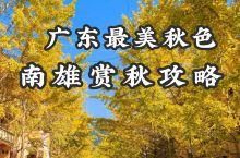 广东最美秋色 南雄三天两夜游玩攻略
