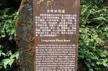 青城山后山(3)