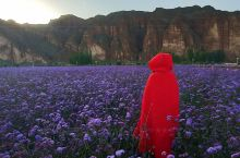 七彩丹霞确实是一个值得去的地方,如果不是亲眼所见,你真的很难想象大自然的鬼斧神工,这次去额济纳沿途去
