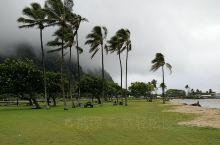 冬天到夏威夷真太爽了