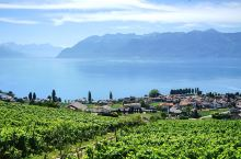 """瑞士日内瓦湖区,是一个为了""""度假""""二字而存在的胜地。每年夏天,在蒙特勒爵士音乐节上,跟着音乐,把烦恼"""