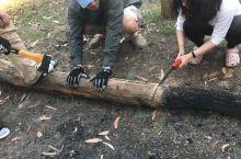 上山砍柴,烧火做饭.