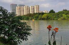 凤城河的风景