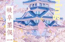 日本樱花·中部地区赏樱秘境岐阜墨俣一夜城