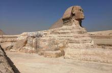 难忘埃及之行,感受文明古国风采