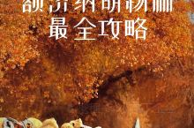 十一旅游推荐 额济纳胡杨林最全攻略
