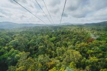 凯恩斯是世界上著名的热带雨林,乘坐雨林缆车,游览整个热带雨林是最好的选择,大家可以从高空观赏整个热带