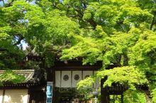【京都·今宮神社】