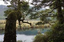 如镜的池塘|沿途的美景|走过路过瞧一瞧