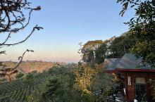 中华普洱茶博览苑酒店——值得再来的酒店