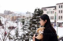 冬日情书:小樽雪灯之路
