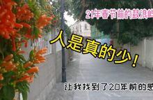 春节前的鼓浪屿,人是真的少,像20年前!