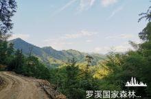湖南省邵阳市罗溪国家森林公园
