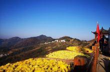 坡山农家秋色(全为农家乐拍摄)。坡山是我比较喜欢的地方,因为这儿的农家把生活过成了诗。