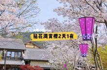 旅行vlog【拈花湾2天1夜怎么玩】