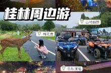 桂林周边游【全州大碧头小鹿园】