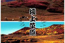 """6条开往""""中国最美秋天""""的自驾路线"""