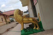 老挝的狮子